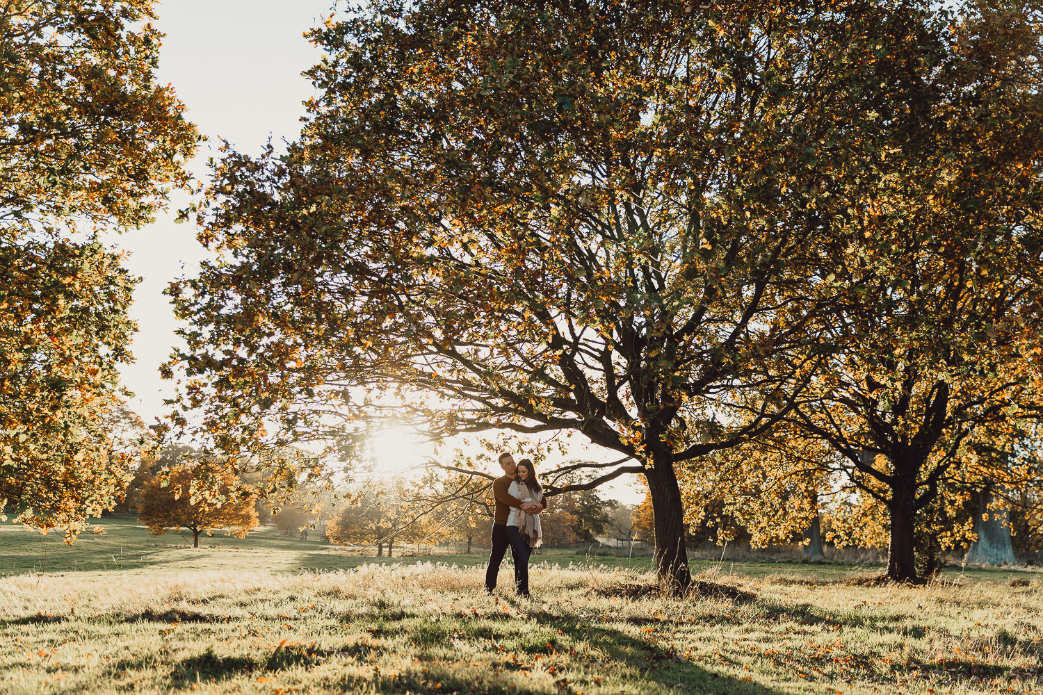 Engagement shoot Norfolk golden hour autumn autumnal tree at sunset