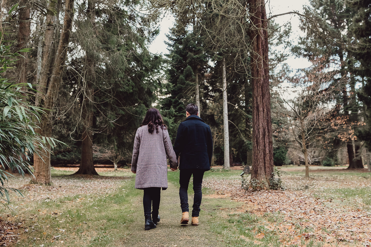 Engagement shoot  autumn woodland Norfolk walking away holding hands